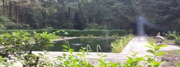 Zwembad omgebouwd tot zwemvijver, inclusief drains, filters en vissen